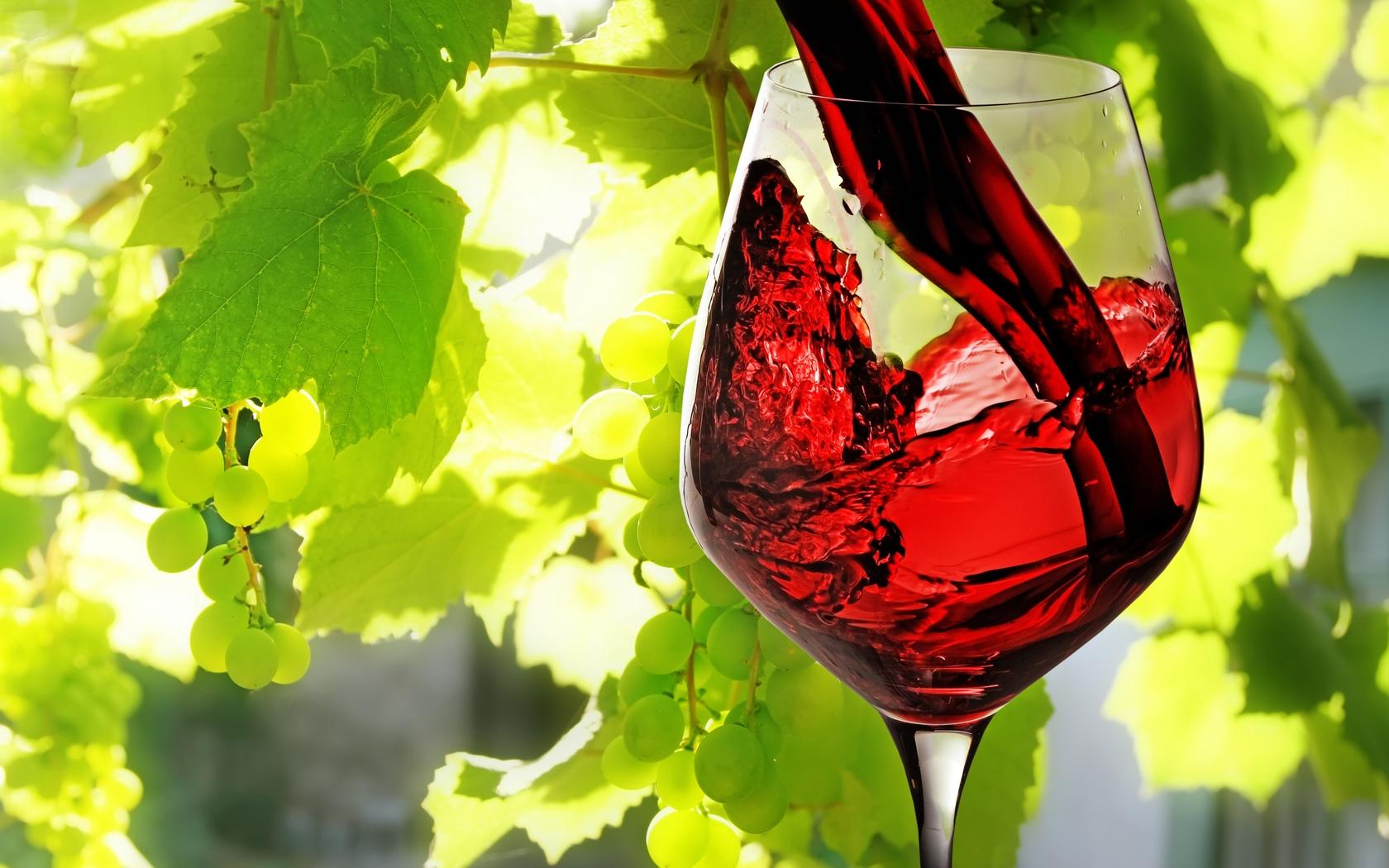 Un Bicchiere Di Vino Al Giorno Allunga La Vita Ohbluraski